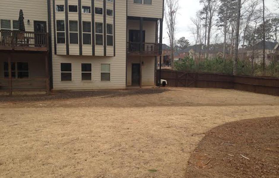 pitbull-breeder-yard2-c