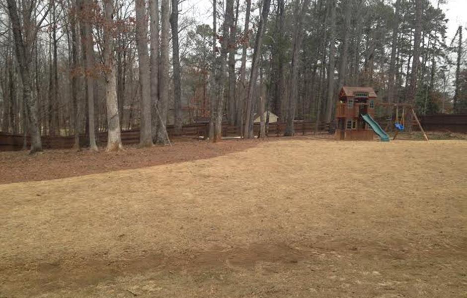 pitbull-breeding-yard4-a